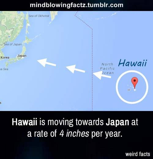 Hawaii is moving toward Japan at a rate of about 4 inches per year. -  MadGhosts